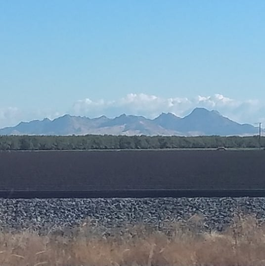 One of my favorite views #sutterbuttes